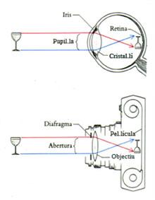 G. Imagen II