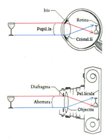 G. Imagen III